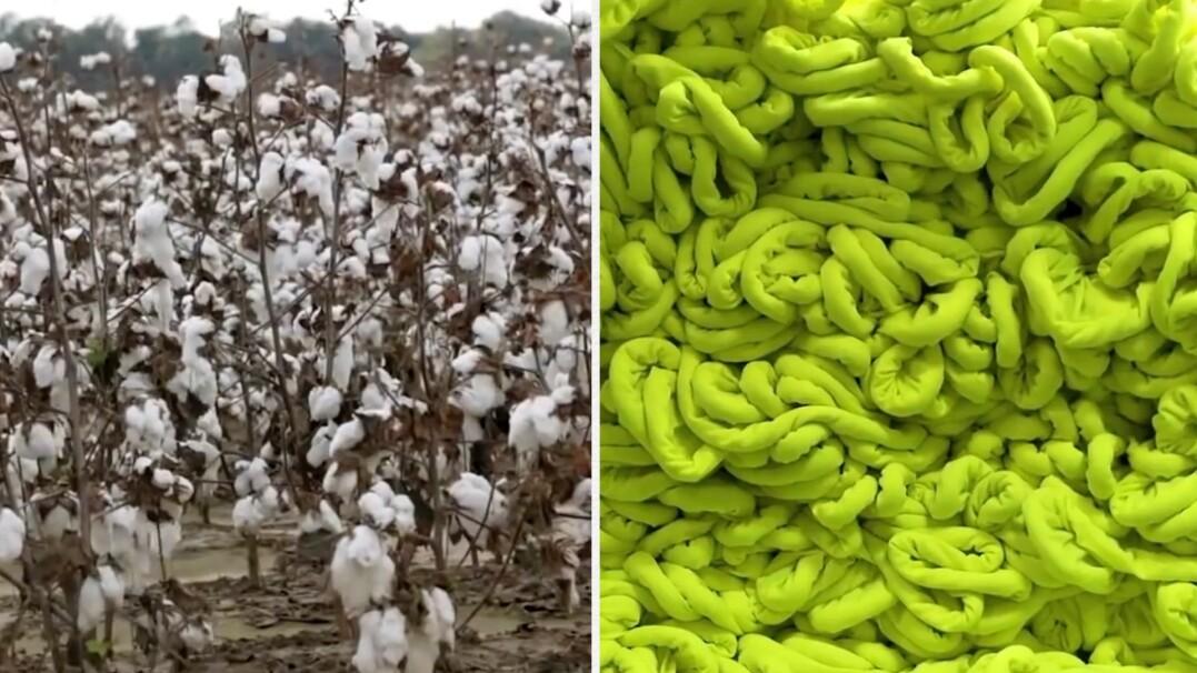 Jak powstają bawełniane ubrania?