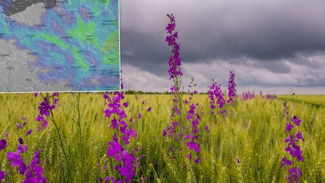 Kapryśne polskie lato. Pochmurno, deszczowo, możliwe burze